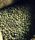 Kenyan Green Beans